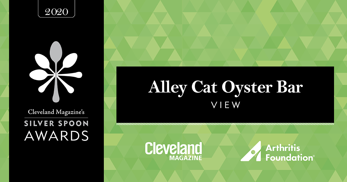 AlleyCat_View_FB (1)